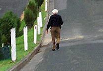 pd027-pedestrians.jpg